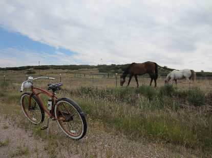 [Day 2, Mile 192, 10:16 a.m.] The Huffster visits some horses.