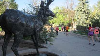 moose statue, Denver Zoo, 2015 Colfax Half Marathon