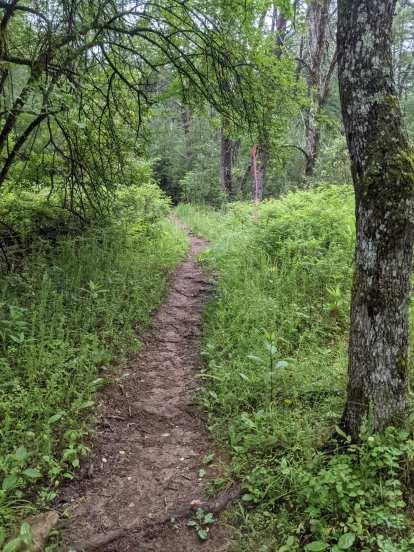Thumbnail for Conquer the Cove Trail Marathon