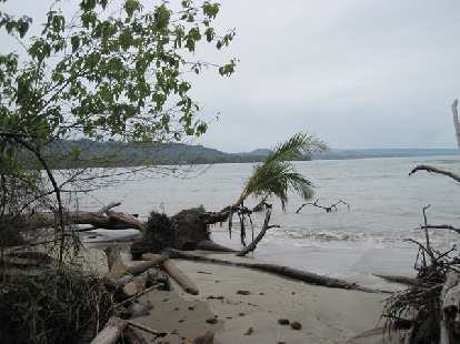 Beach at Parque Nacional Cahuita.