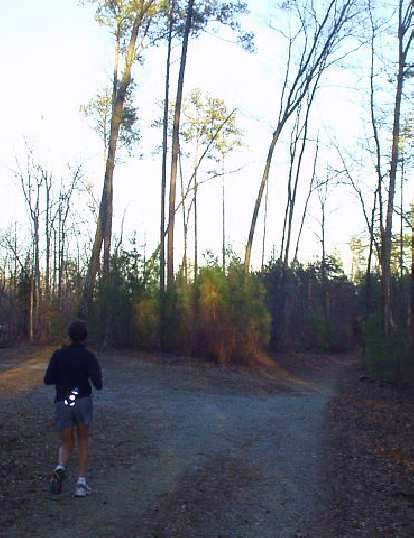 For good times' sake we also ran 10 miles in the Duke Forest.