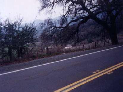 side of road, 1999 Davis 200k Brevet
