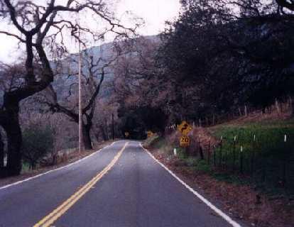 uphill road, 1999 Davis 200k Brevet