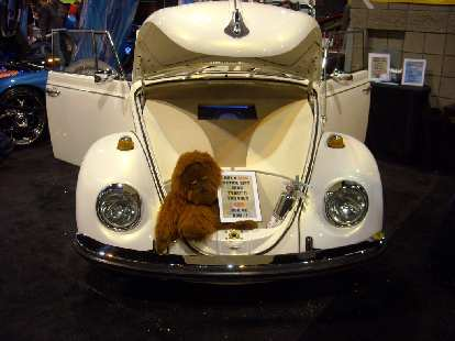 A monkey in a pimped out Volkswagen Beetle.