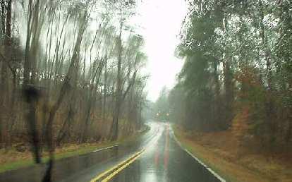 wooded forests, rainy road, Durham, North Carolina
