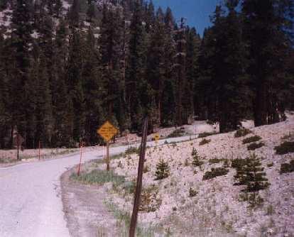 curve in road, eastern Sierras