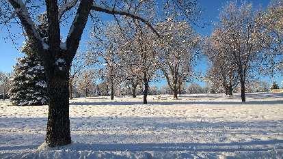 Edora Park, snow, January, Fort Collins