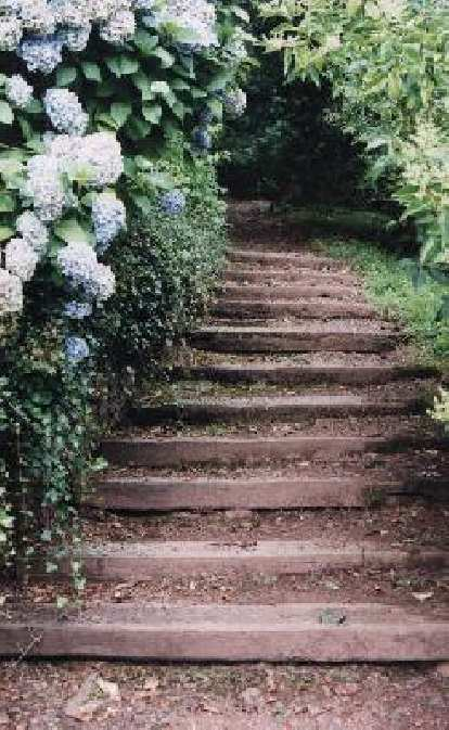 Steps to the Dunster Castle.