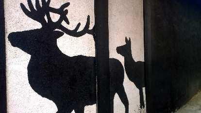 Elk painting on side of building in Estes Park.