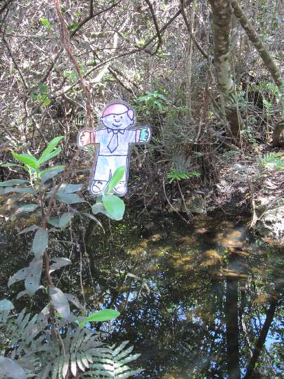 Flat Stanley made a slight detour onto a walking trail off the main recreation loop from the Shark Valley Visitor Center.