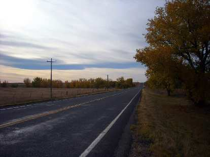 [Mile 150] Hooray, finally some trees again!  This was near the Pawnee National Grasslands in Colorado.