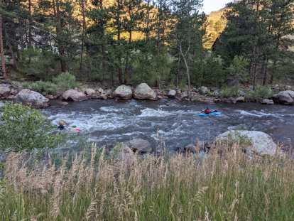 Two kayakers navigating by the Poudre River.