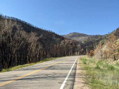 In the 10-mile stretch west of Rustic, many trees had burn scars from last year's raging wildfires in the Poudre Canyon.