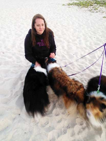 A woman with four mini-collies came walking upon the beach and they greeted Kelly.