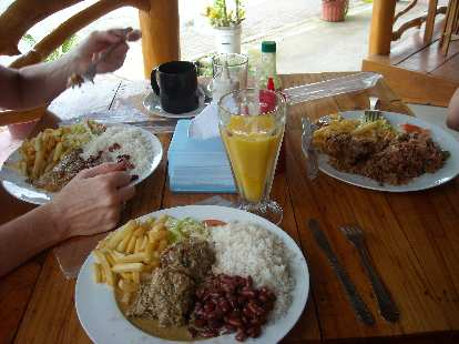 In Cahuita, we had a big lunch at a Caribbean restaurant.  Each of our combination plates had rice, beans, and French fries.  I also had fish.