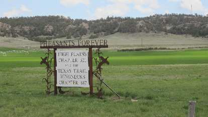 Pheasants Forever: High Plains Chapter 32 and the Texas Trail Ringnecks Chapter 887
