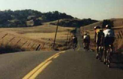 bicyclists, paceline, golden hills, 1997 Foxy's Fall Classic