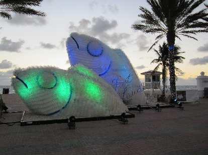 Fish at Fort Lauderdale Beach.