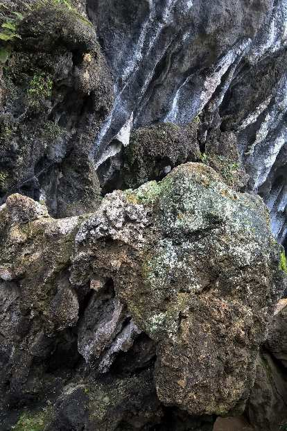 Natural rock that look like animal heads at the Fujian Linyin Stone Forest.