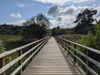 A bridge on a running trail on the north side of Pontevedra.