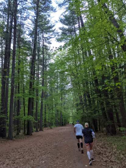 Running through a forest of tall trees at Mine Falls Park in Nashua, New Hampshire for the Granite State Marathon.