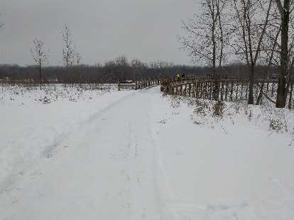 This typifies the trails we ran on, which had about 1-2 inches of snow on them after being plowed on Friday.