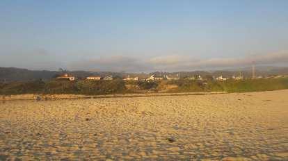 Homes along the beach.