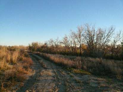 Trail by Richards Lake.