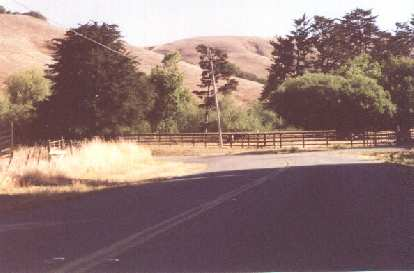 brown foothills, winding road, 2001 Holstein Hundred