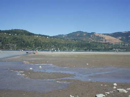 Hood River: the windsurf capital of the world.  Ok, this is a crappy picture, but on this Saturday August afternoon there were several dozen windsurfers out along with sunbathers along the beach.