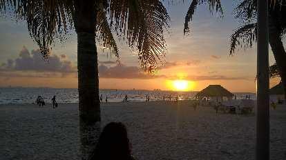 sunset, palm trees, Isla Mujeres