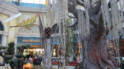 The Bellagio Conservatory & Botanical Gardens.