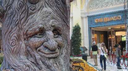 """An """"alive"""" tree at the Bellagio Conservatory & Botanical Gardens"""