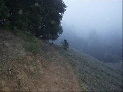 Going up the trail as the fog lingered ahead.