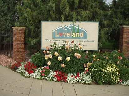 Lovely flowers in Loveland.
