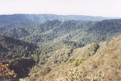 The view from the Saratoga Gap Trail in Castle Rock State Park, CA, in search of a climbing area dubbed M&M's.