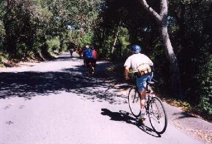 Thumbnail for Old La Honda Bike Climb, CA