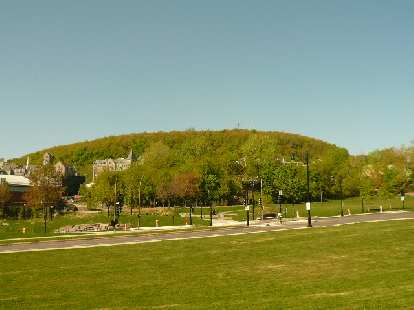 The view of Mont-Royal from Le Plateau.