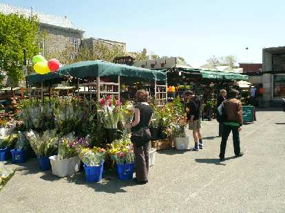 Flower sale right outside the Mont-Royal metro station