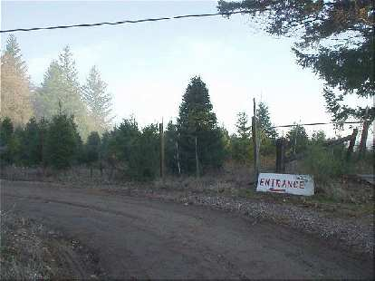 """The entrance of the Christmas tree farm.  When I explained to the tree seller that, no, I was not here to buy a tree but was a CA County Summit seeker, he joked, """"We are a TREE farm, not a tourist company!"""""""