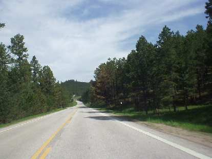 Man, what a great drive to Deadwood from Mt. Rushmore!  I think this is Highway 385.