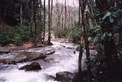 The river from Cucumber Falls.