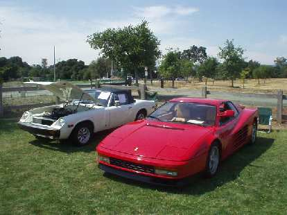 Jensen Healey and Ferrari Testarossa.  I had almost bought the former in 1995, before I purchased Goldie