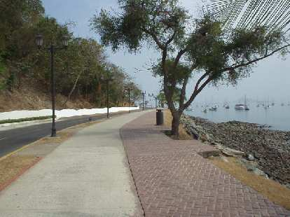The road to the Marino de Flamenco.