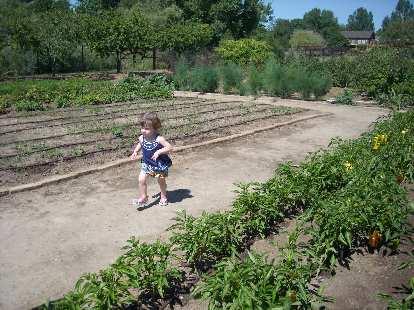 Charis' daughter Zoe running amok among the gardens.