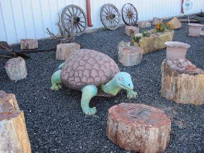 A giant turtle among petrified wood.