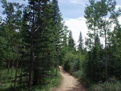 [Mile 18.9, 5:36 elapsed] The field had spread out and much less runners were in sight.  At least the scenery was great as I walked and hobbled down the trail...