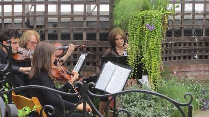 The orchestra at Kristina and Juergen's wedding inside the Phipps Conservatory.