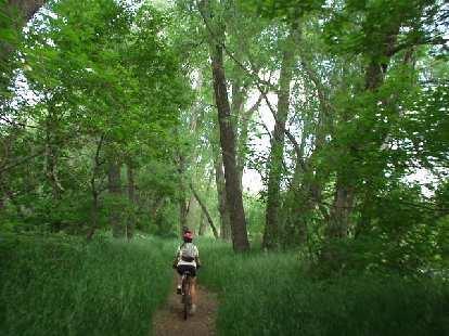 Thumbnail for Poudre Trail MTB Ride
