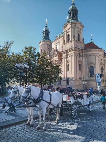A couple horses in front of a building in Old Town in Prague.